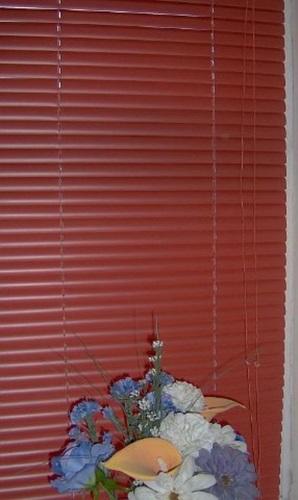 Venetian Blind Blinds Pvc Terracotta 60cm 2ft New Ebay